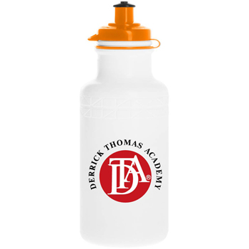 Classic 22 oz. Water Bottle